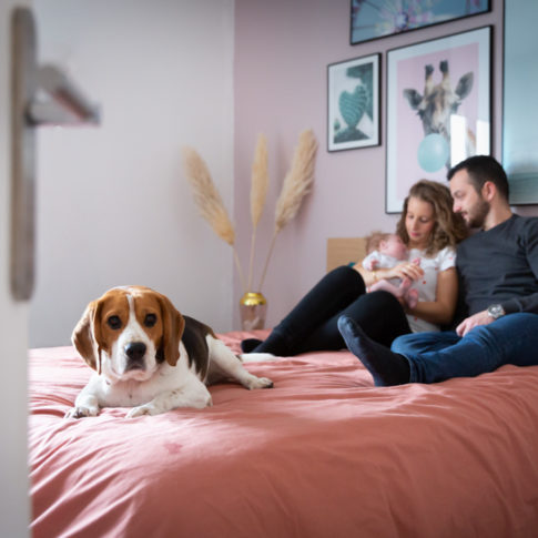 Un couple pose avec son bébé et son chien lors d'une séance photo naissance. Photo prise par Myriam Ohayon Photographe