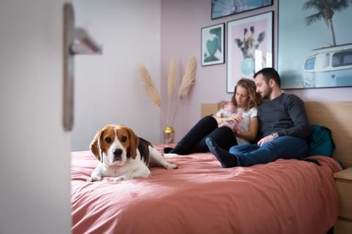 Un couple pose pour une séance photo naissance avec leur bébé et leur chien sur le lit. Photo prise par Myriam Ohayon Photographe à Pégomas