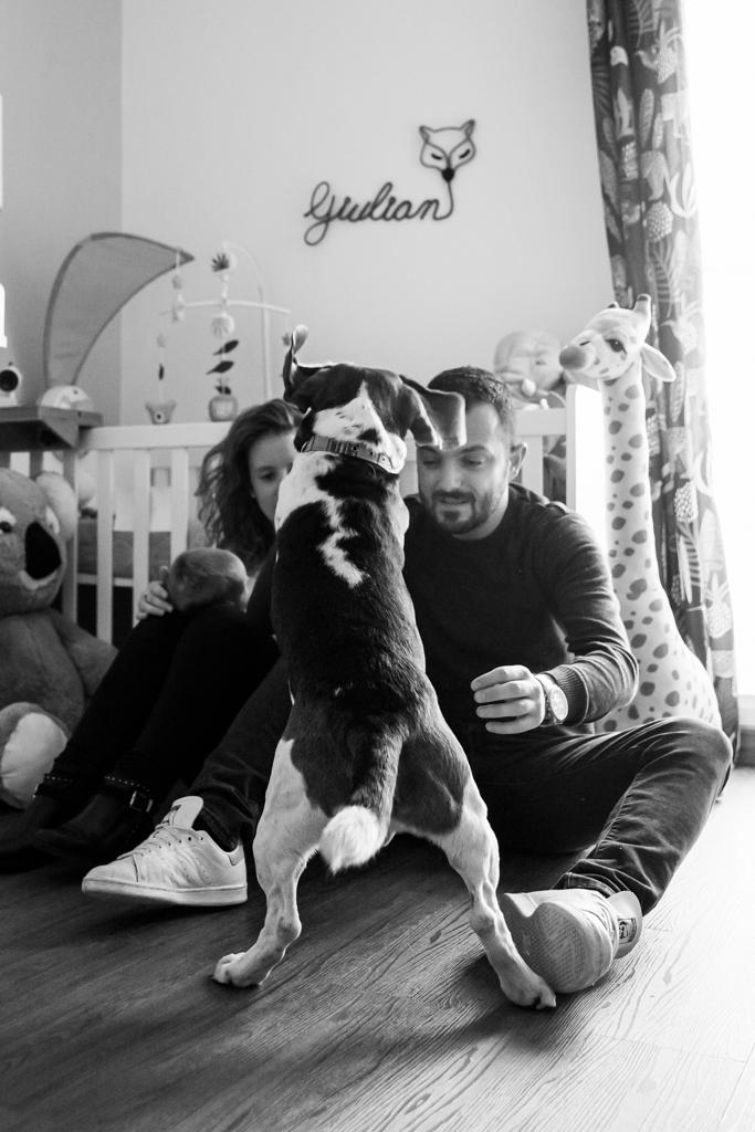 photobomb d'un chien en pleine séance photo naissance à domicile à Pégomas.